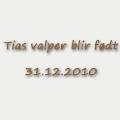 valpefodsel-copy